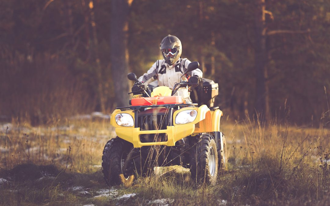Insuring Your Toys