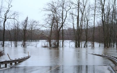 Flooding: Are You Prepared?