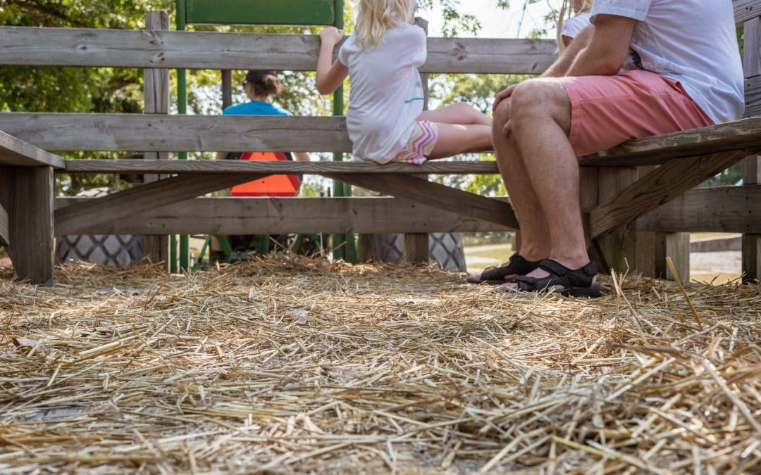 9 Tips for a Safe Hayride