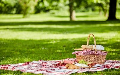 Seven Picnic Tips For The Perfect Summer Evening