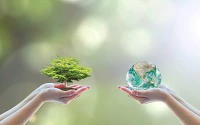 Want to Help the Planet? Try A Green Hack or Two!
